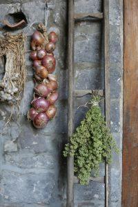 Giardino e orto biologico